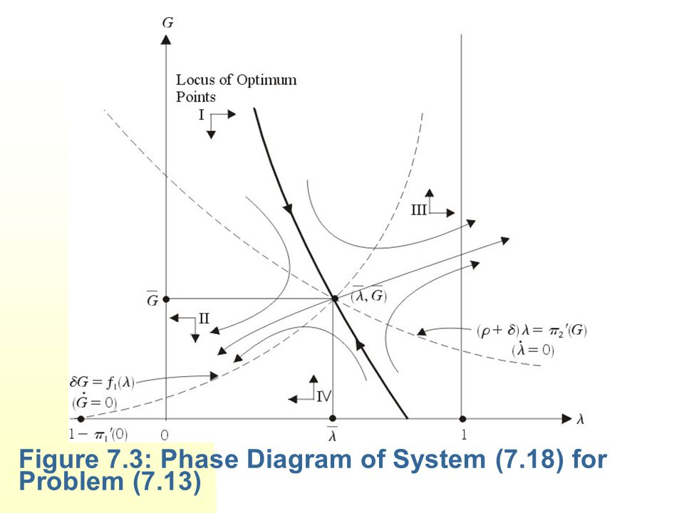 Figure 7.3: Phase Diagram of System (7.18) for Problem (7.13)