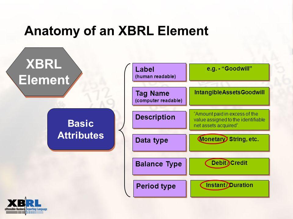 XBRL Element XBRL Element Basic Attributes Data type Balance Type Period type Description Tag Name (computer readable) Tag Name (computer readable) Label (human readable) Label (human readable) Monetary / String, etc.