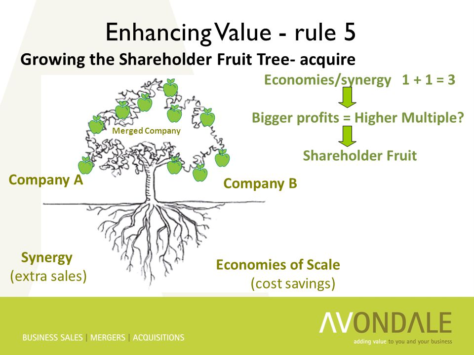 Synergy (extra sales) Economies of Scale (cost savings) Company A Company B Merged Company Enhancing Value - rule 5 Growing the Shareholder Fruit Tree- acquire Economies/synergy 1 + 1 = 3 Bigger profits = Higher Multiple.