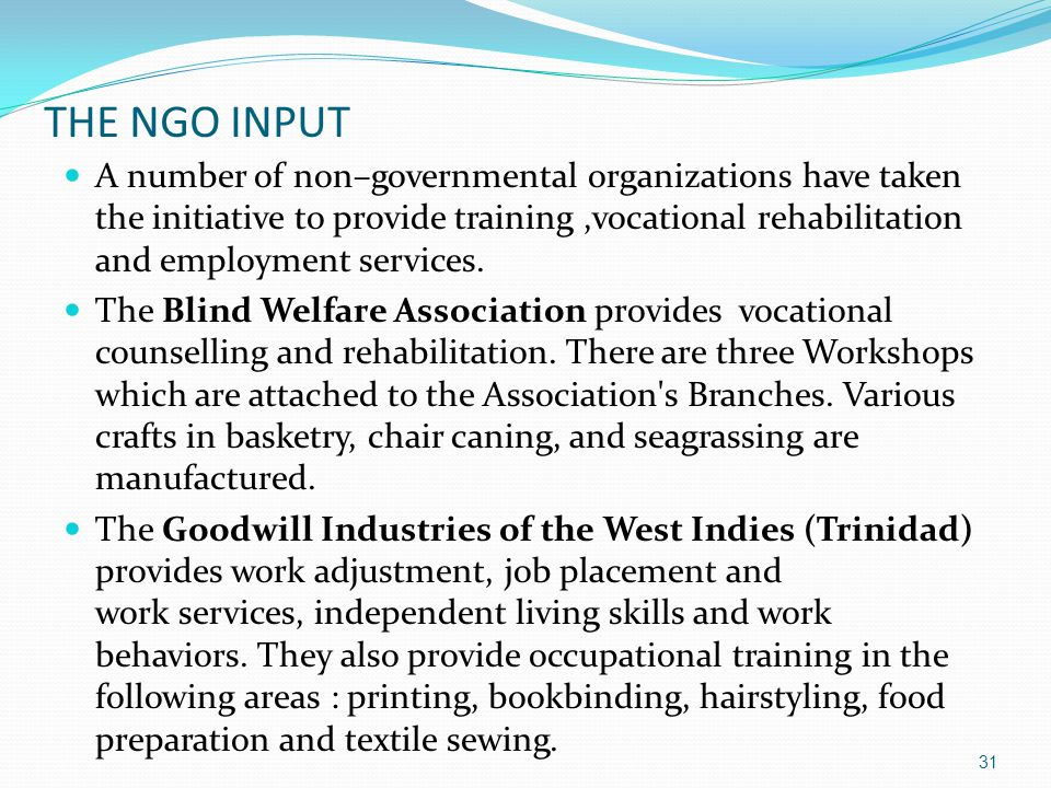 THE NGO INPUT A number of non–governmental organizations have taken the initiative to provide training,vocational rehabilitation and employment servic