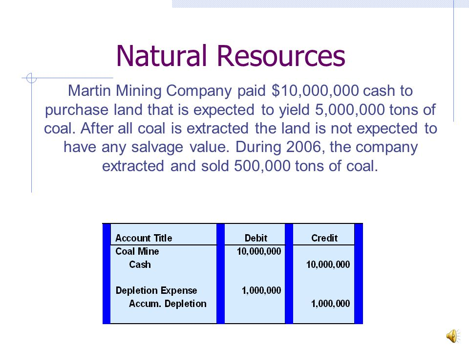Natural Resources Martin Mining Company paid $10,000,000 cash to purchase land that is expected to yield 5,000,000 tons of coal.