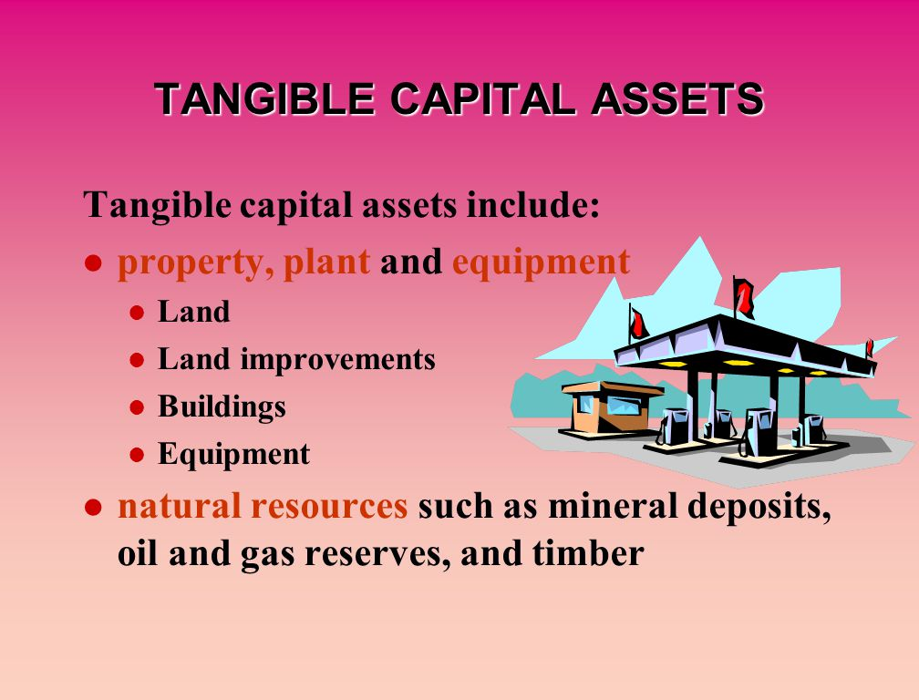 TANGIBLE CAPITAL ASSETS Tangible capital assets include: property, plant and equipment Land Land improvements Buildings Equipment natural resources such as mineral deposits, oil and gas reserves, and timber