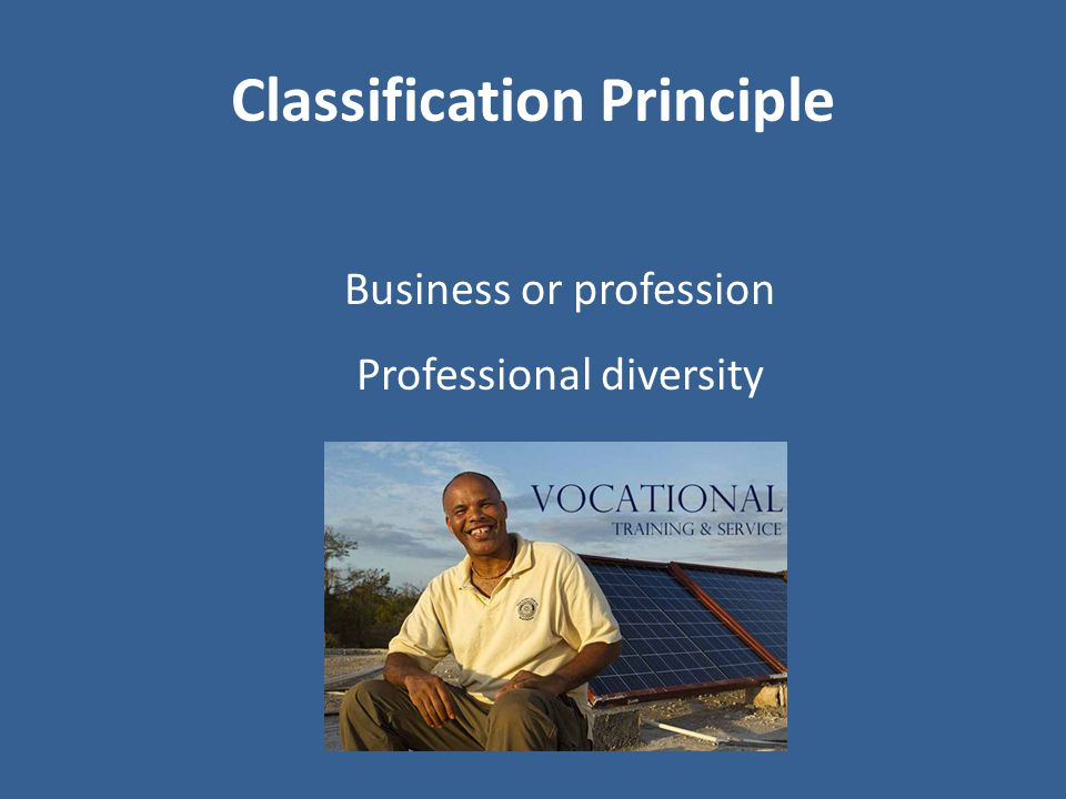 Classification Principle Business or profession Professional diversity