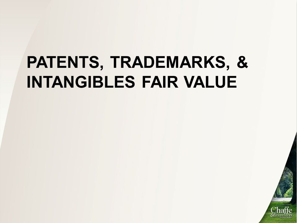 Outline Valuation of Customer Relationships, Technology, and Non-Compete Agreements –A Case Study Goodwill Impairment