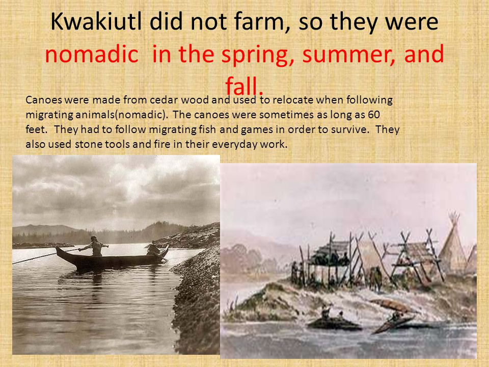 Kwakiutl did not farm, so they were nomadic in the spring, summer, and fall. Canoes were made from cedar wood and used to relocate when following migr