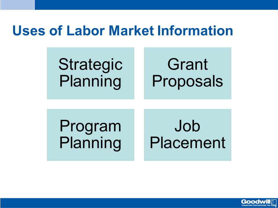 Uses of Labor Market Information Strategic Planning Grant Proposals Program Planning Job Placement