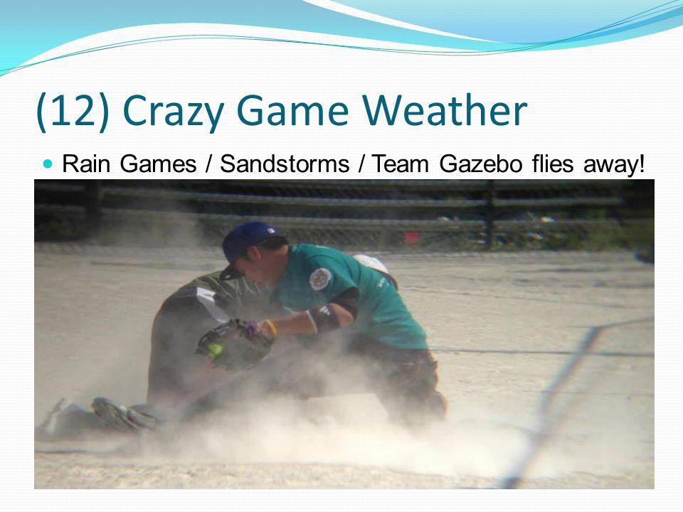 (12) Crazy Game Weather Rain Games / Sandstorms / Team Gazebo flies away!
