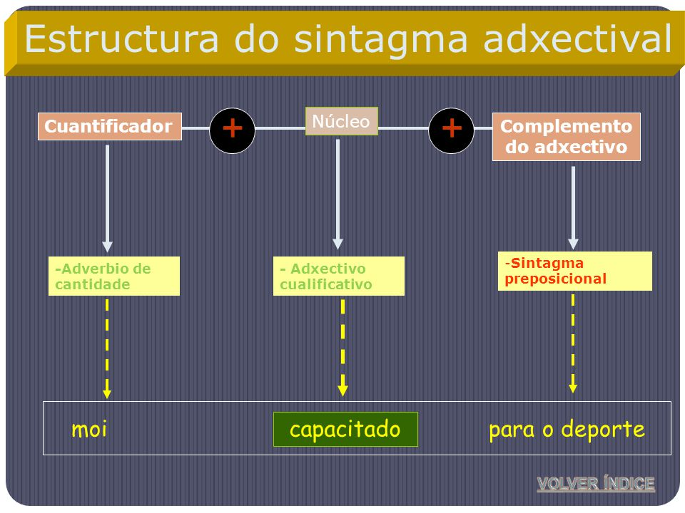 Núcleo Complemento do adxectivo -Adverbio de cantidade -Sintagma preposicional Cuantificador ++ capacitadomoipara o deporte Estructura do sintagma adx