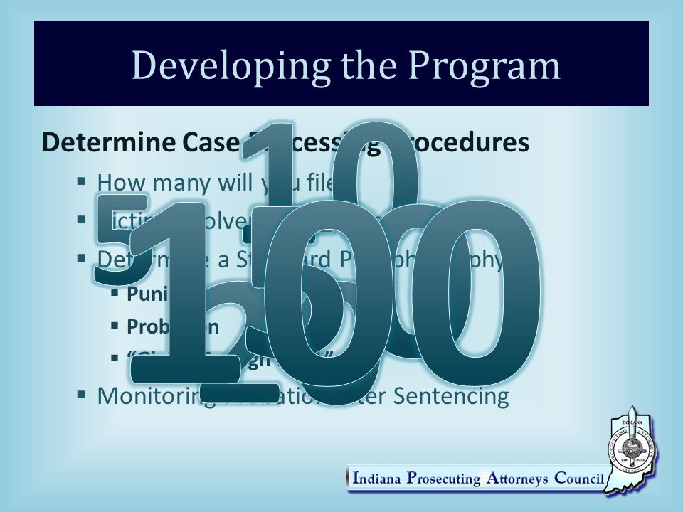 Developing the Program Determine Case Processing Procedures  How many will you file  Victim Involvement and Assistance  Determine a Standard Plea philosophy  Punishment  Probation  Giving Enough Rope  Monitoring Probation after Sentencing