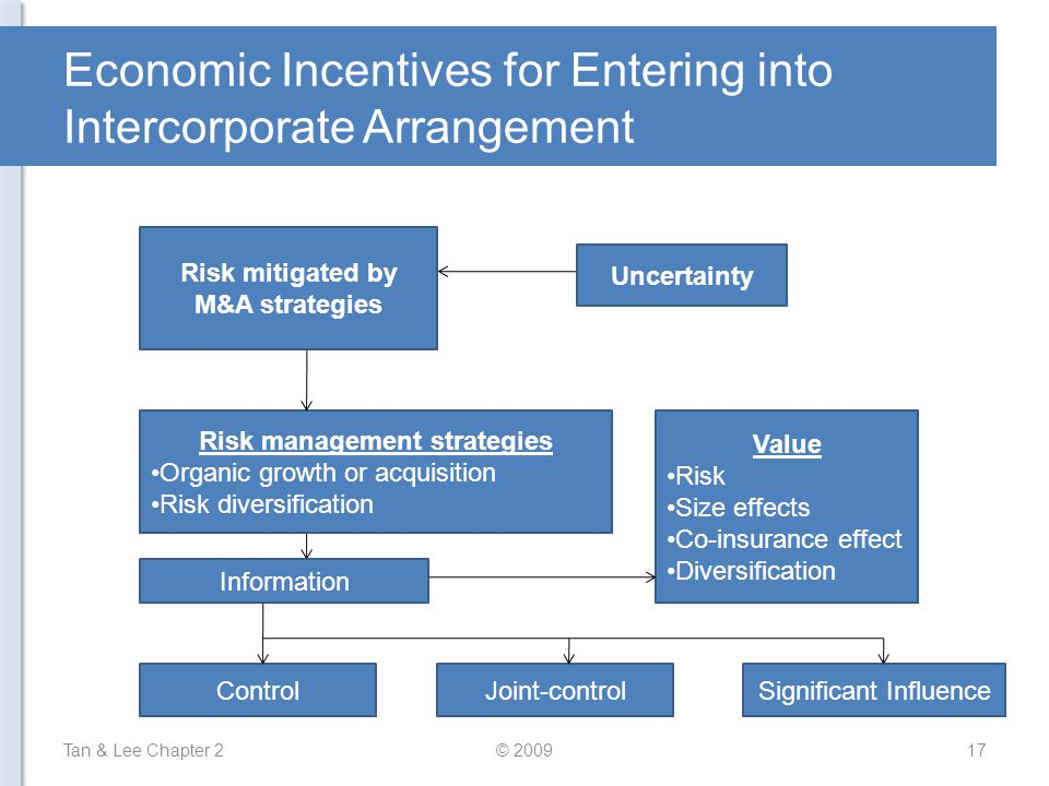 Economic Incentives for Entering into Intercorporate Arrangement Tan & Lee Chapter 217© 2009 Uncertainty Risk mitigated by M&A strategies Risk management strategies Organic growth or acquisition Risk diversification Information ControlJoint-controlSignificant Influence Value Risk Size effects Co-insurance effect Diversification