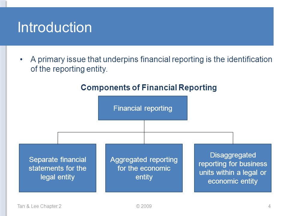 Introduction A primary issue that underpins financial reporting is the identification of the reporting entity. Tan & Lee Chapter 24© 2009 Financial re