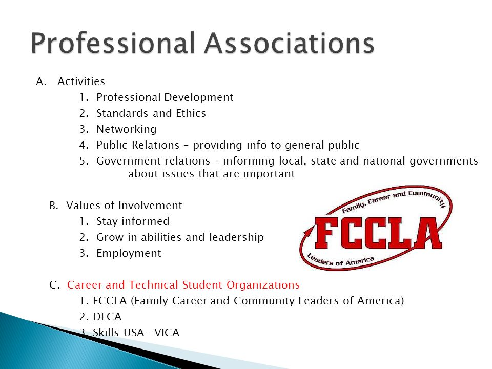 A. Activities 1. Professional Development 2. Standards and Ethics 3.