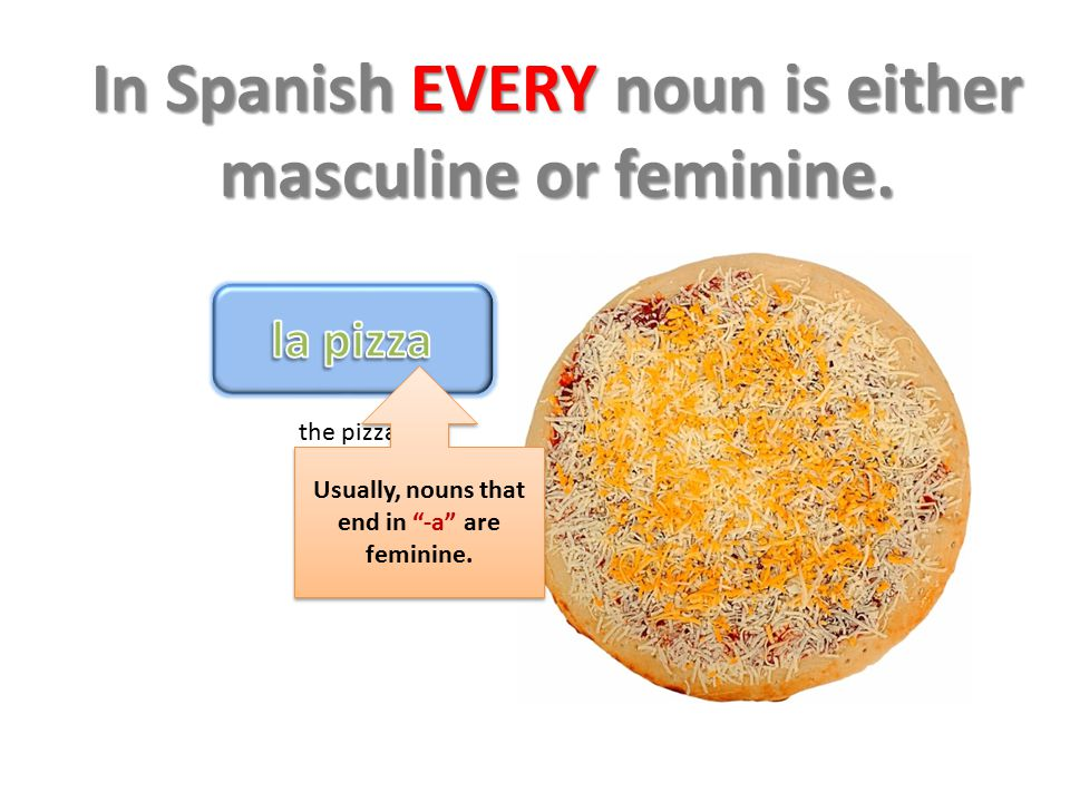 "In Spanish EVERY noun is either masculine or feminine. the pizza Usually, nouns that end in ""-a"" are feminine."
