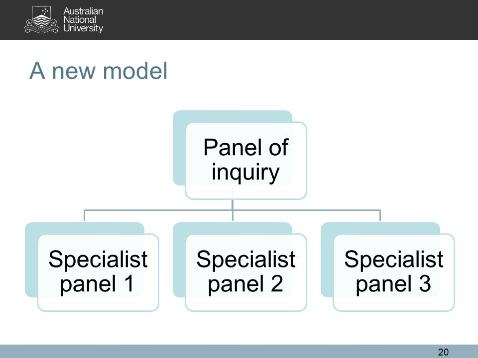 A new model Panel of inquiry Specialist panel 1 Specialist panel 2 Specialist panel 3 20