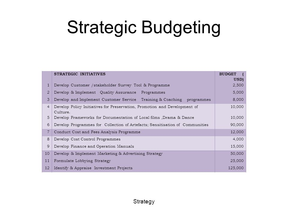 Strategic Budgeting STRATEGIC INITIATIVES BUDGET ( USD) 1Develop Customer /stakeholder Survey Tool & Programme 2,500 2Develop & Implement Quality Assurance Programmes 5,000 3Develop and Implement Customer Service Training & Coaching programmes 8,000 4 Develop Policy Initiatives for Preservation, Promotion and Development of Culture.