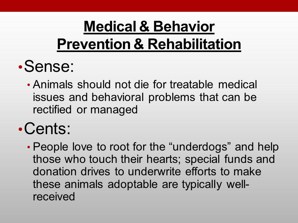 Medical & Behavior Prevention & Rehabilitation Sense: Animals should not die for treatable medical issues and behavioral problems that can be rectified or managed Cents: People love to root for the underdogs and help those who touch their hearts; special funds and donation drives to underwrite efforts to make these animals adoptable are typically well- received
