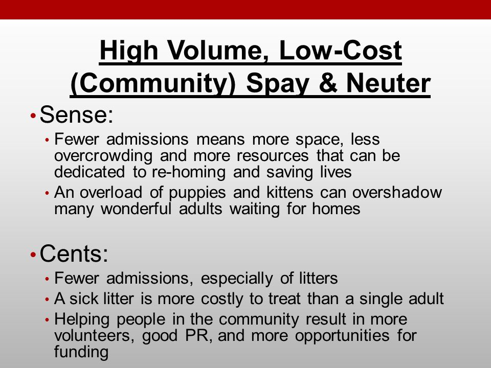 Sense: Fewer admissions means more space, less overcrowding and more resources that can be dedicated to re-homing and saving lives An overload of puppies and kittens can overshadow many wonderful adults waiting for homes Cents: Fewer admissions, especially of litters A sick litter is more costly to treat than a single adult Helping people in the community result in more volunteers, good PR, and more opportunities for funding High Volume, Low-Cost (Community) Spay & Neuter