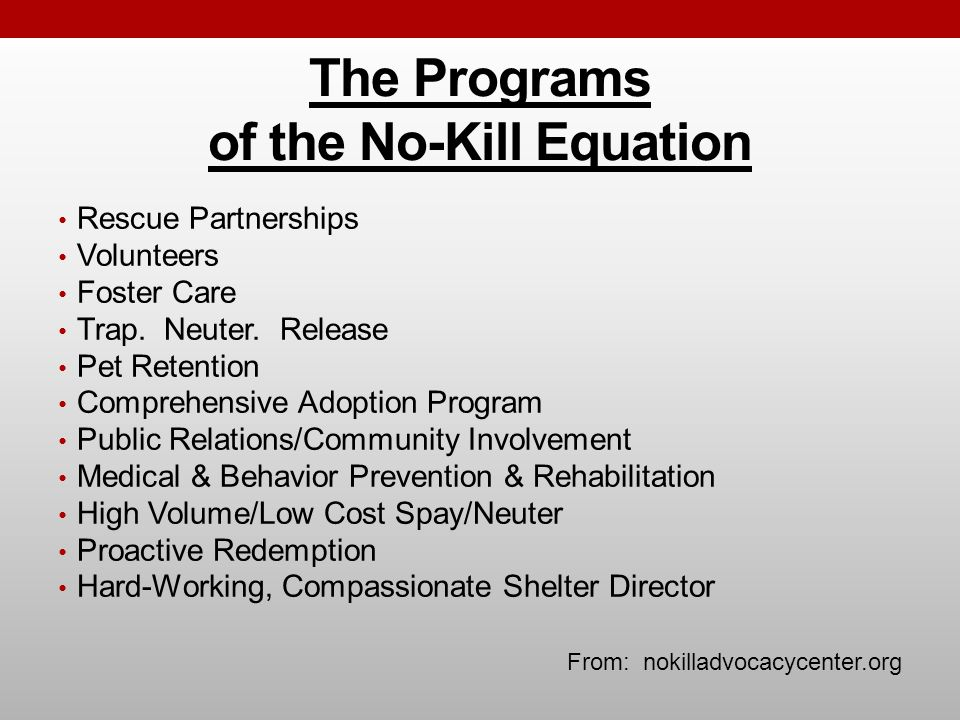 The Programs of the No-Kill Equation Rescue Partnerships Volunteers Foster Care Trap.