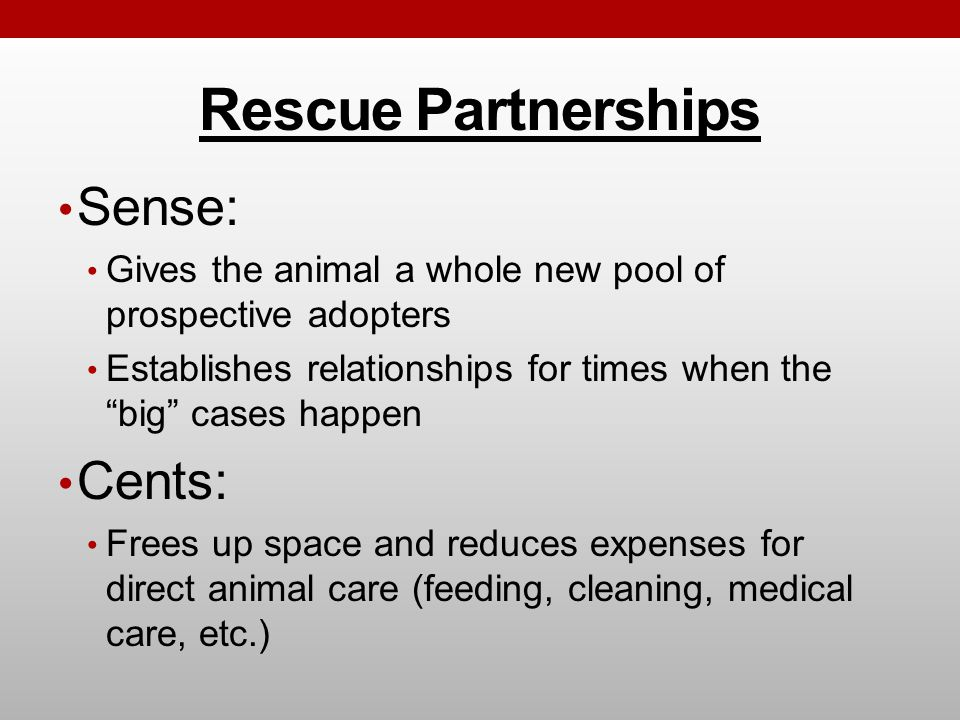 Rescue Partnerships Sense: Gives the animal a whole new pool of prospective adopters Establishes relationships for times when the big cases happen Cents: Frees up space and reduces expenses for direct animal care (feeding, cleaning, medical care, etc.)