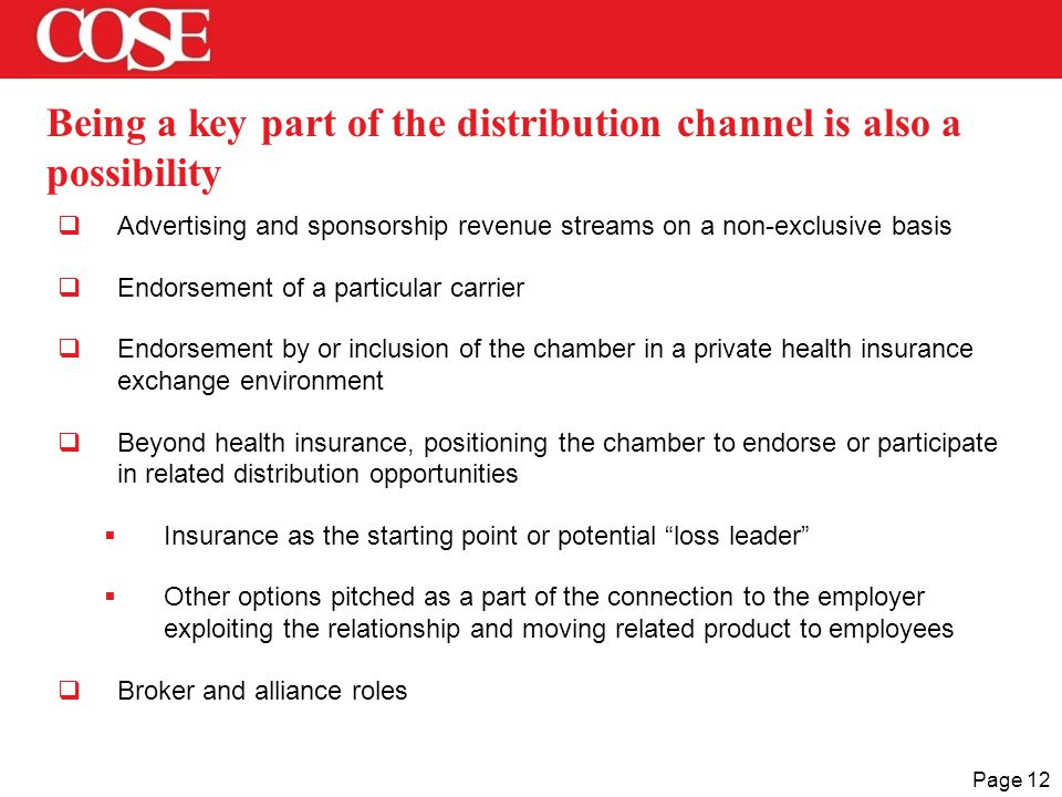 Page 12 Being a key part of the distribution channel is also a possibility  Advertising and sponsorship revenue streams on a non-exclusive basis  En