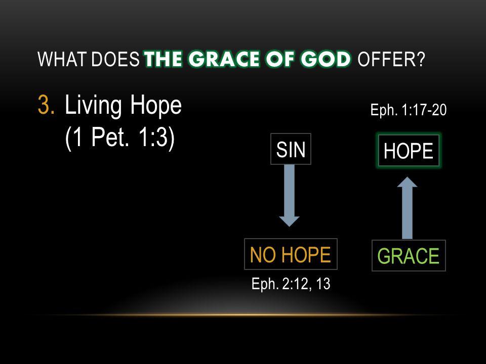 3.Living Hope (1 Pet. 1:3) SIN NO HOPE HOPE GRACE Eph. 2:12, 13 Eph. 1:17-20