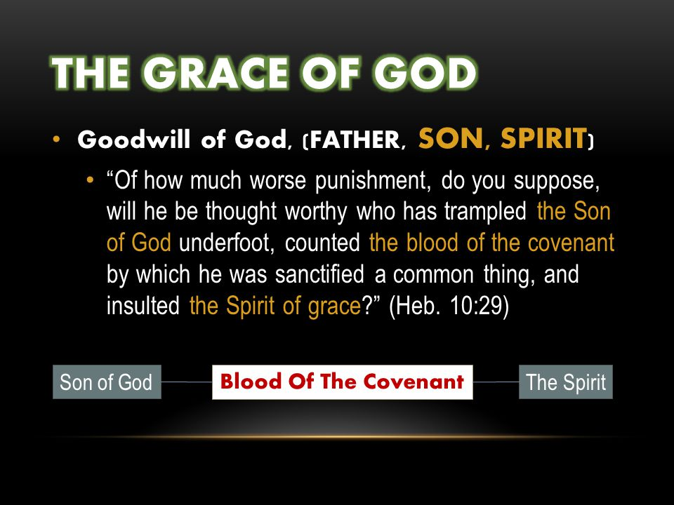 Goodwill of God, (FATHER, SON, SPIRIT ) Of how much worse punishment, do you suppose, will he be thought worthy who has trampled the Son of God underfoot, counted the blood of the covenant by which he was sanctified a common thing, and insulted the Spirit of grace? (Heb.