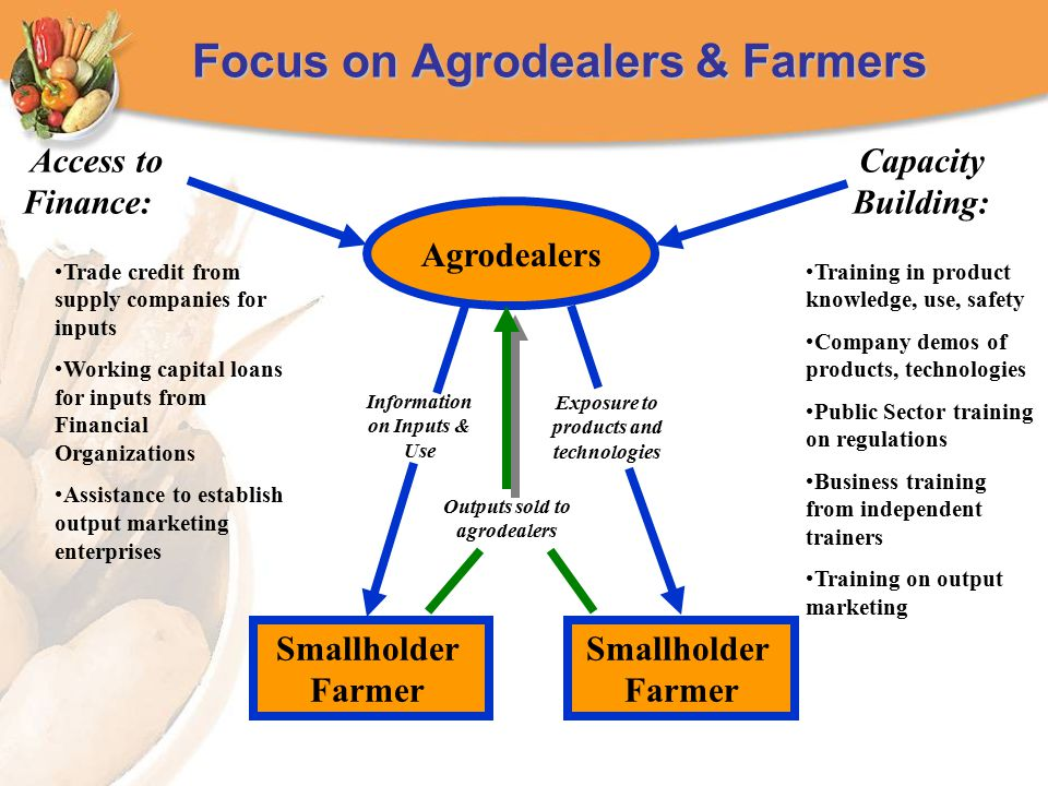 Focus on Agrodealers & Farmers Training in product knowledge, use, safety Company demos of products, technologies Public Sector training on regulations Business training from independent trainers Training on output marketing Access to Finance: Agrodealers Smallholder Farmer Smallholder Farmer Information on Inputs & Use Exposure to products and technologies Trade credit from supply companies for inputs Working capital loans for inputs from Financial Organizations Assistance to establish output marketing enterprises Capacity Building: Outputs sold to agrodealers