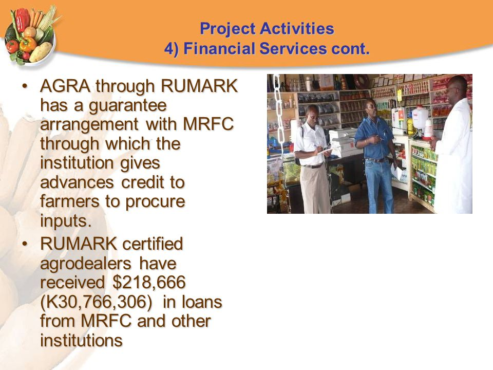 Project Activities 4) Financial Services cont.
