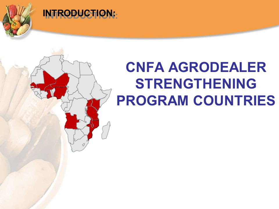 CNFA AGRODEALER STRENGTHENING PROGRAM COUNTRIES INTRODUCTION: