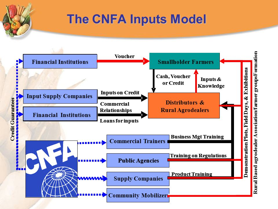 The CNFA Inputs Model