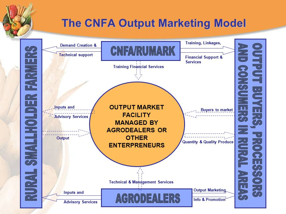 The CNFA Output Marketing Model OUTPUT MARKET FACILITY MANAGED BY AGRODEALERS OR OTHER ENTERPRENEURS Training, Linkages, Financial Support & Services Training Financial Services Demand Creation & Technical support Inputs and Advisory Services Buyers to market Quantity & Quality Produce Output Inputs and Advisory Services Technical & Management Services Output Marketing Info & Promotion