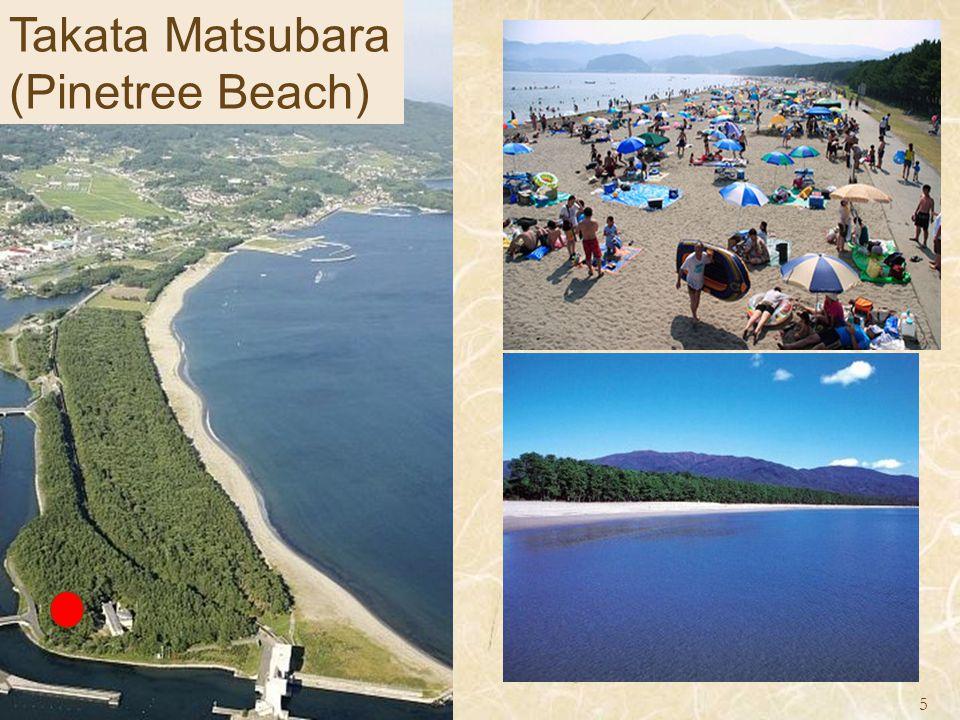 Takata Matsubara (Pinetree Beach) 5
