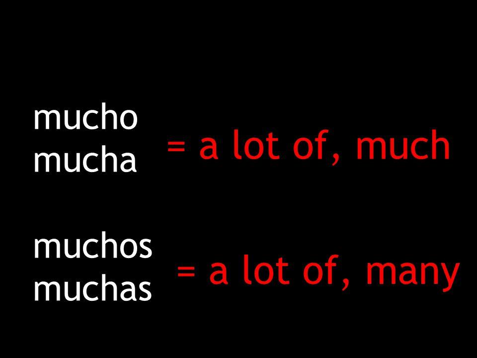 Cuánto Cuánta Cuántos Cuántas = How much = How many