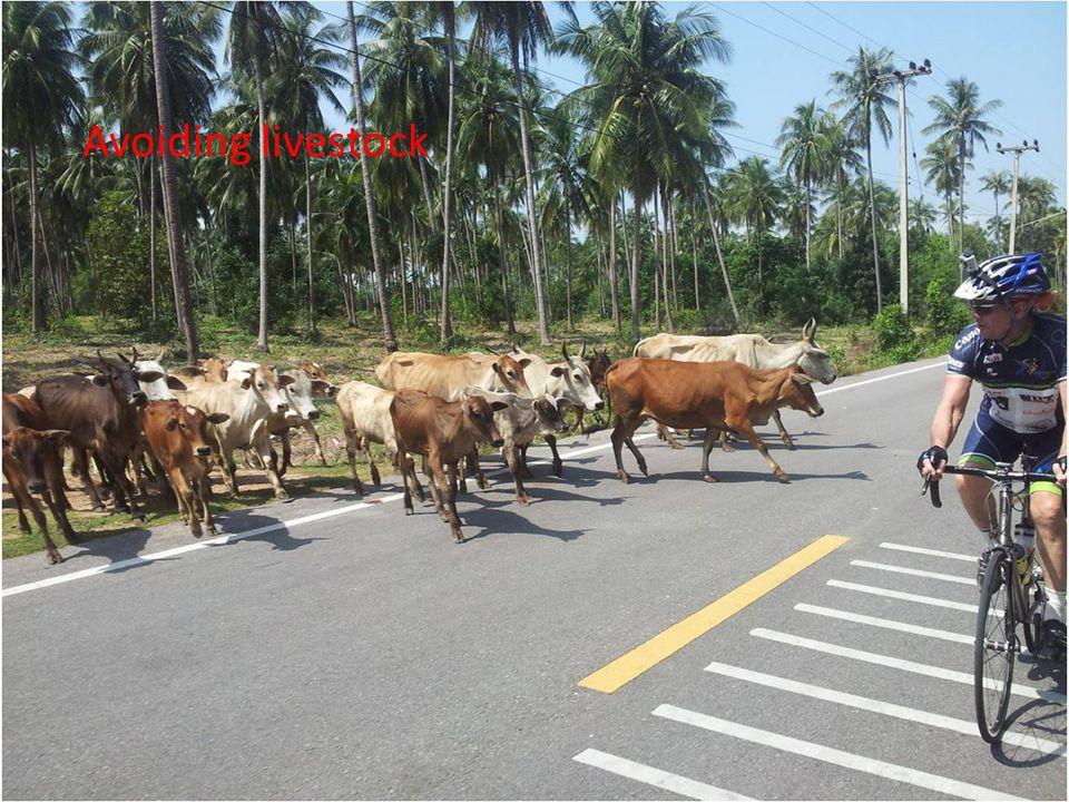 Avoiding livestock
