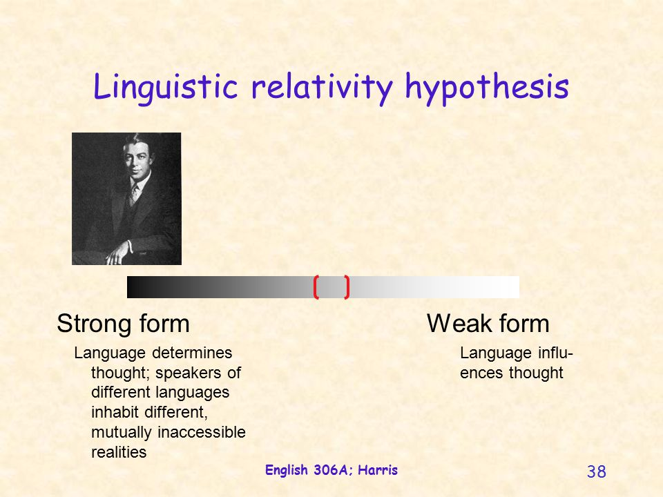 English 306A; Harris 38 Linguistic relativity hypothesis Strong form Language determines thought; speakers of different languages inhabit different, mutually inaccessible realities Weak form Language influ- ences thought