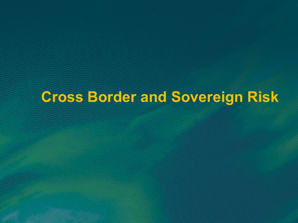 Cross Border and Sovereign Risk