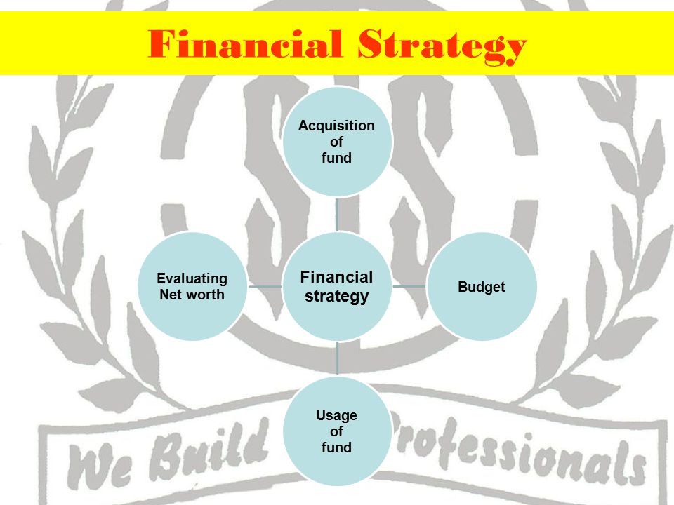 Financial Strategy Financial strategy Acquisition of fund Budget Usage of fund Evaluating Net worth