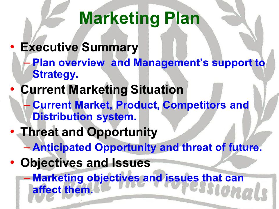 Marketing Plan Executive Summary – Plan overview and Management's support to Strategy.