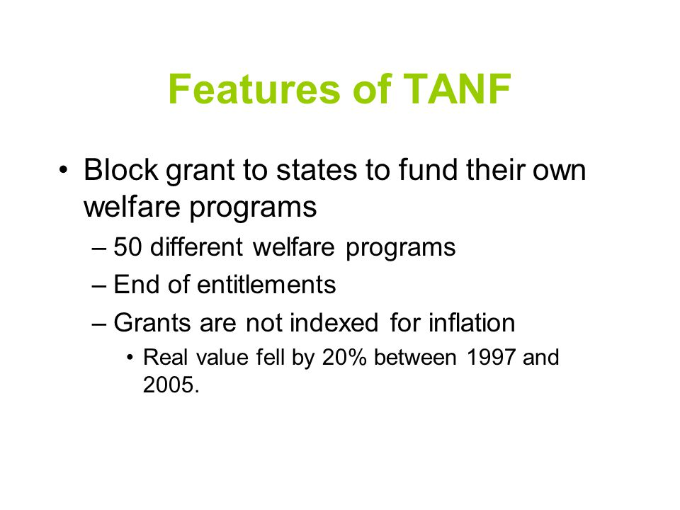 Features of TANF Block grant to states to fund their own welfare programs –50 different welfare programs –End of entitlements –Grants are not indexed for inflation Real value fell by 20% between 1997 and 2005.