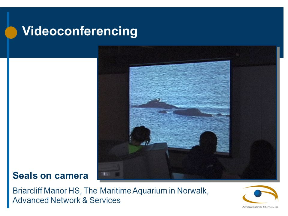 Videoconferencing Seals on camera Briarcliff Manor HS, The Maritime Aquarium in Norwalk, Advanced Network & Services