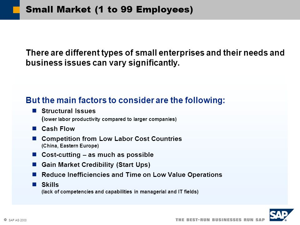  SAP AG 2003 Medium Market (100 to 499 Employees) The companies here have some similarities with both small companies and larger ones.