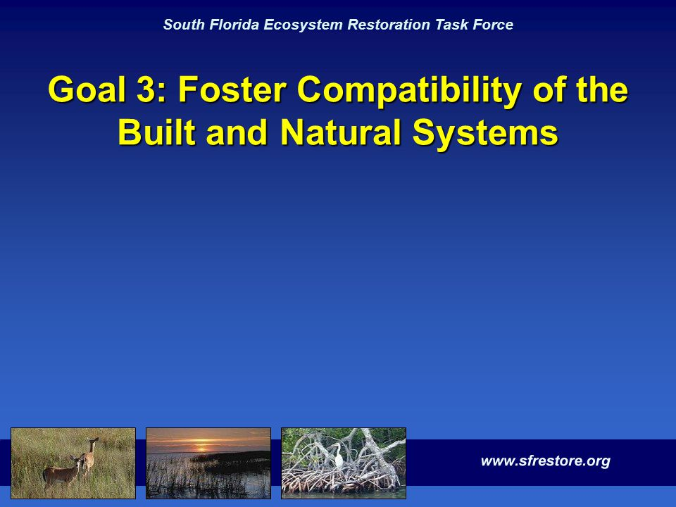 South Florida Ecosystem Restoration Task Force Goal 3: Foster Compatibility of the Built and Natural Systems