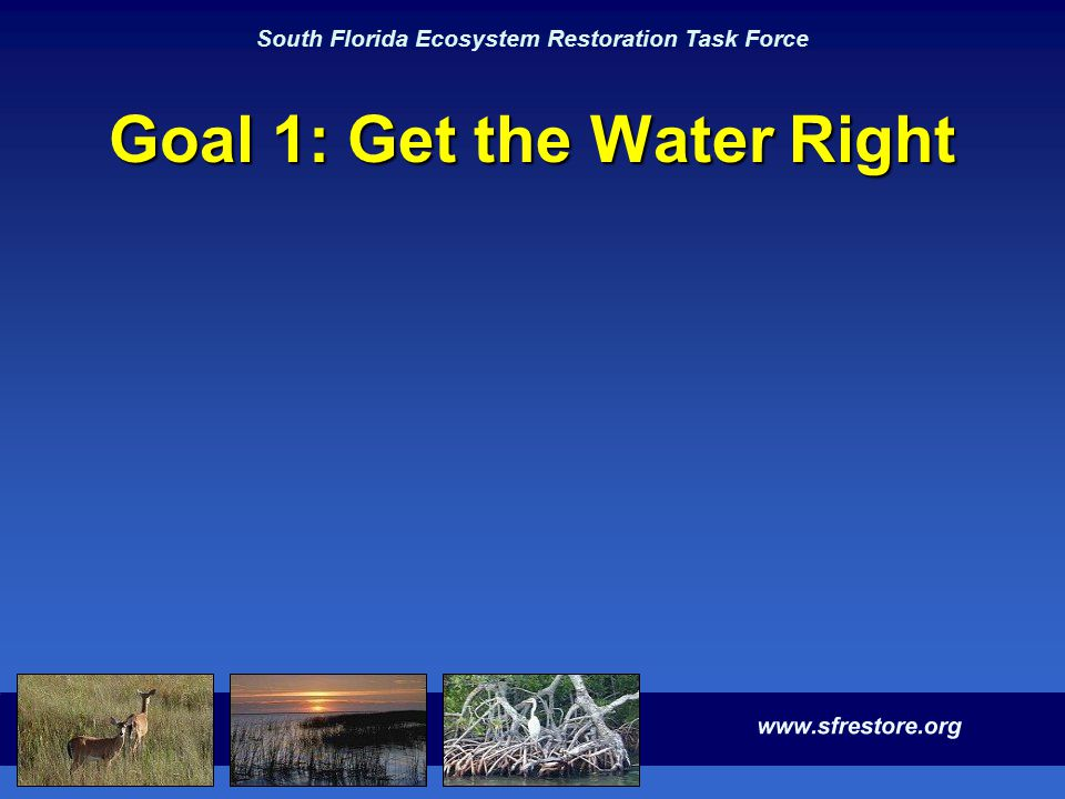 South Florida Ecosystem Restoration Task Force Goal 1: Get the Water Right