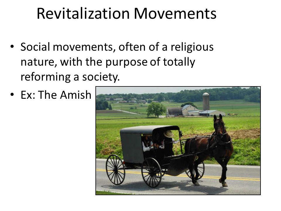 Revitalization Movements Social movements, often of a religious nature, with the purpose of totally reforming a society.