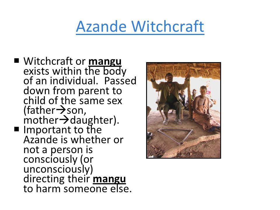 Azande Witchcraft  Witchcraft or mangu exists within the body of an individual.