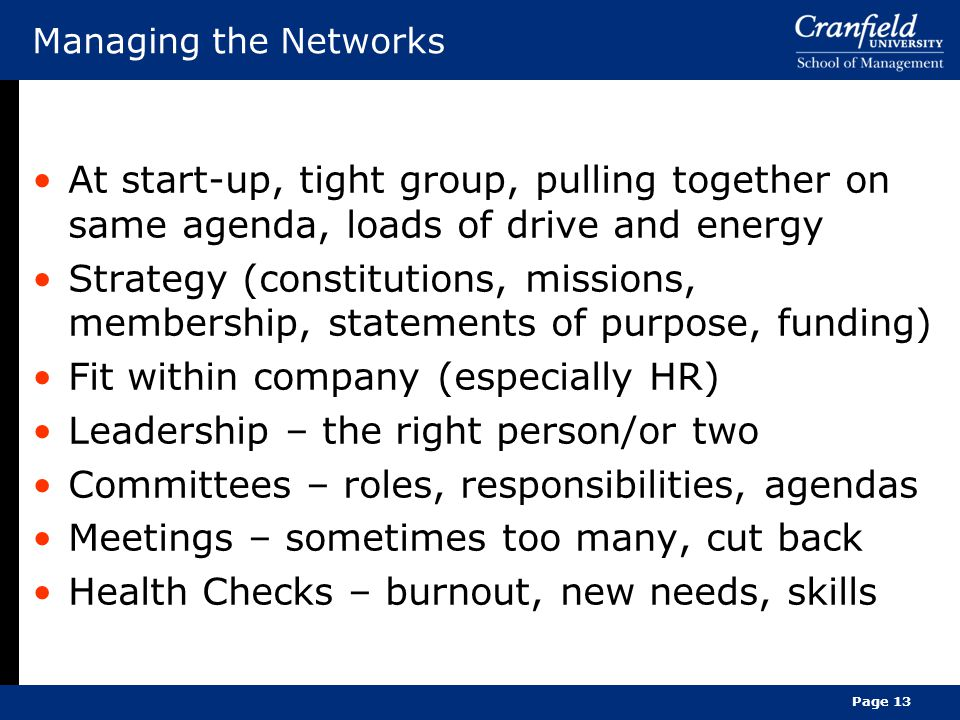 Managing the Networks At start-up, tight group, pulling together on same agenda, loads of drive and energy Strategy (constitutions, missions, membership, statements of purpose, funding) Fit within company (especially HR) Leadership – the right person/or two Committees – roles, responsibilities, agendas Meetings – sometimes too many, cut back Health Checks – burnout, new needs, skills Page 13