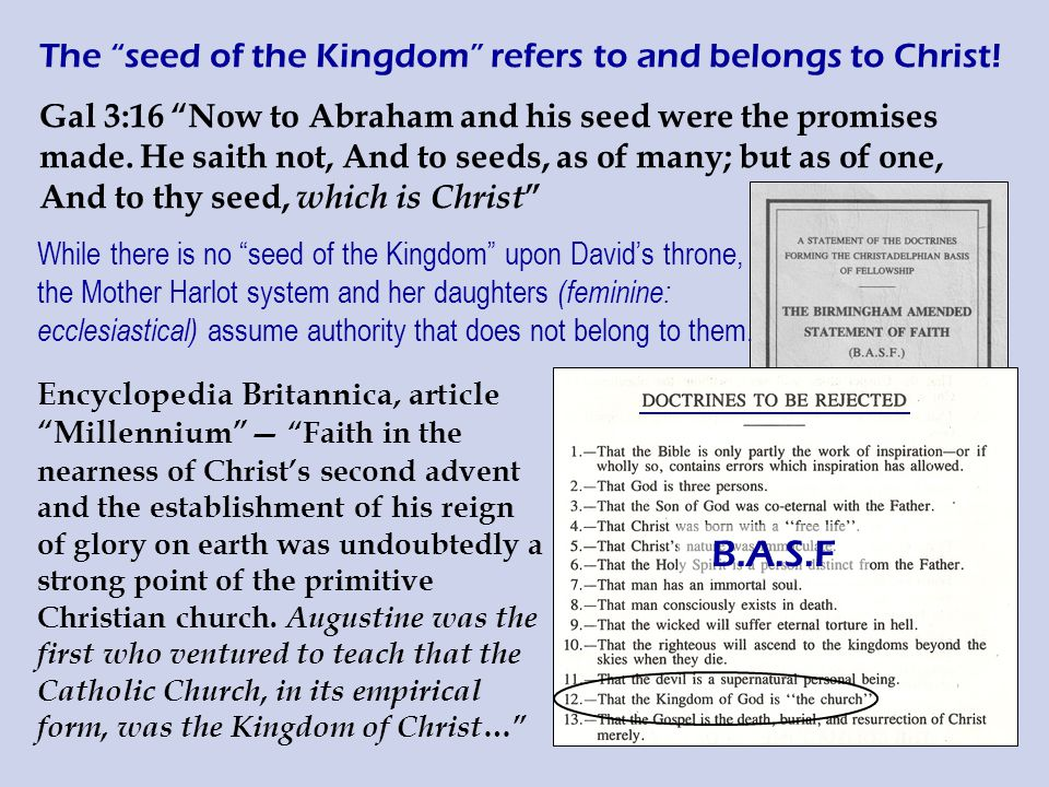 The seed of the Kingdom refers to and belongs to Christ.