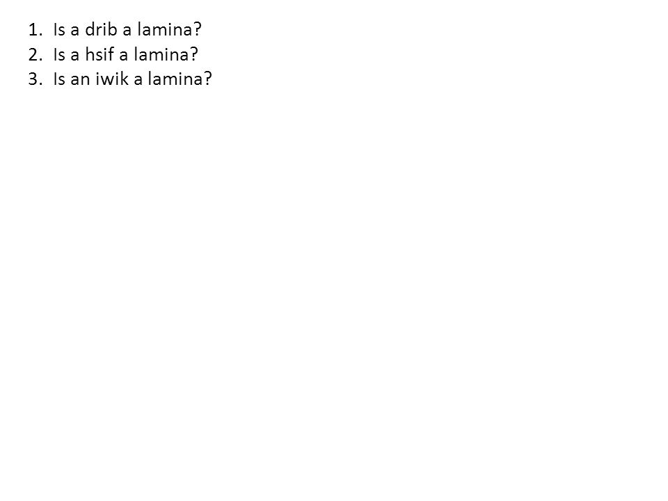 1.Is a drib a lamina 2.Is a hsif a lamina 3.Is an iwik a lamina
