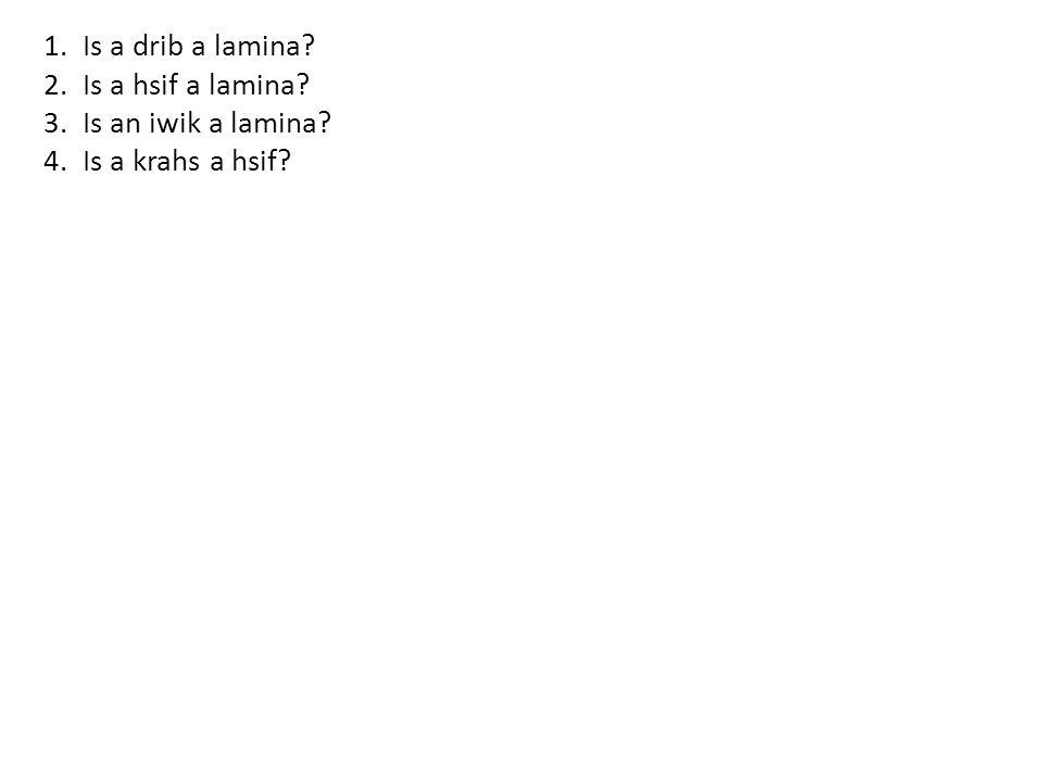 1.Is a drib a lamina 2.Is a hsif a lamina 3.Is an iwik a lamina 4.Is a krahs a hsif
