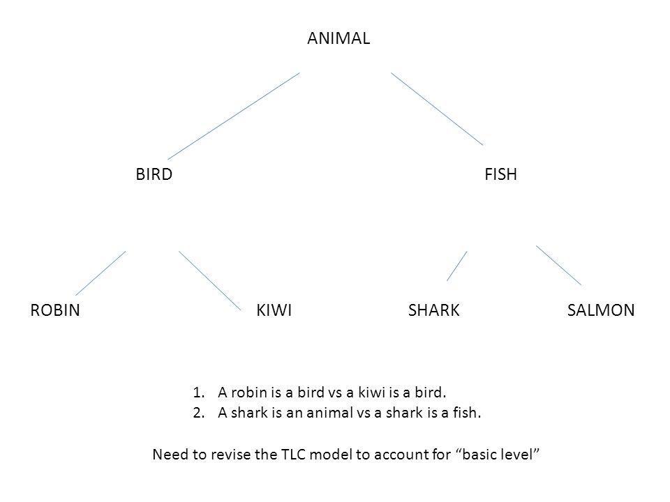 ANIMAL BIRDFISH ROBINKIWISHARKSALMON 1.A robin is a bird vs a kiwi is a bird.